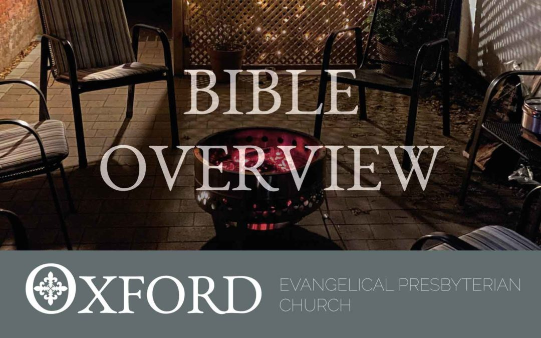 The Search Bible Overview